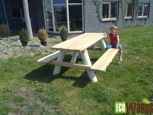 Boomstambank Robinia picknick