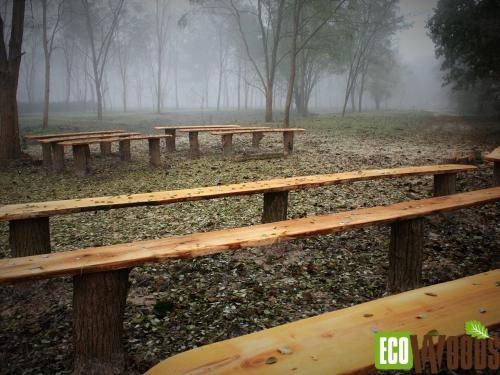 Robinia Boomstaamparkbanken zonder rugleuning met staanders met schors op Natuurbegraafplaats Fryslan 1